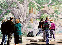 Seasons Mural Photo