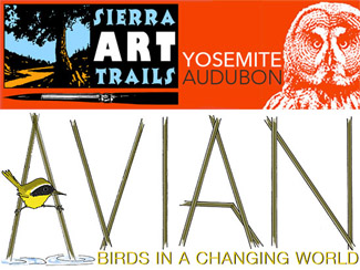 Avian Small Graphic