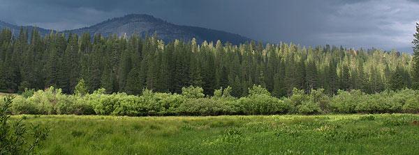 Sierra Panorama Photo